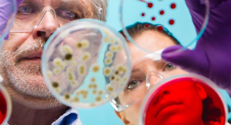 Ecoantibiotics - AVVA Pharmaceuticals Ltd